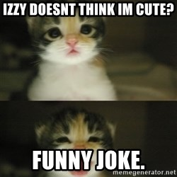 Adorable Kitten - izzy doesnt think im cute? funny joke.