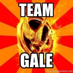 Typical fan of the hunger games - TEAM  GALE