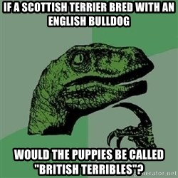 """Philosoraptor - if a scottish terrier bred with an english bulldog would the puppies be called """"british TERRIBLES""""?"""