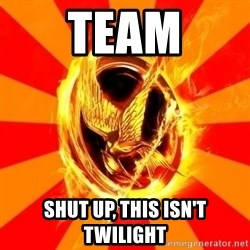 Typical fan of the hunger games - TEAM SHUT UP, THIS ISN'T TWILIGHT