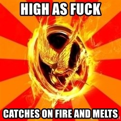 Typical fan of the hunger games - high as fuck catches on fire and melts