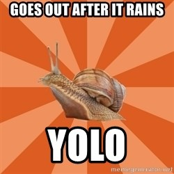 Clueless Casual Pumpkins Fan Snail - Goes out after it rains Yolo