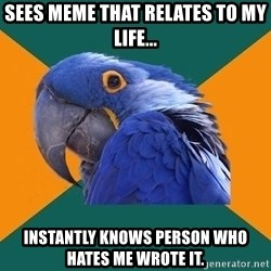 Paranoid Parrot - Sees meme that relates to my life... Instantly knows person who hates me wrote it.
