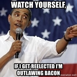 Obama You Mad - Watch yourself, If I get reelected I'm outlawing Bacon