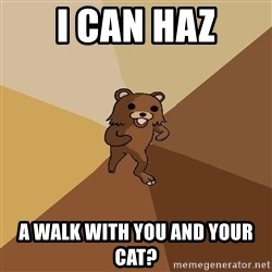 Pedo Bear From Beyond - I can haz a walk with you and your cat?