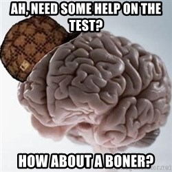 Scumbag Brain - Ah, need some help on the test? How about a boner?
