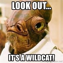 Its A Trap - Look out... It's a wildcat!