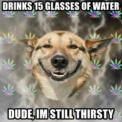 Stoner Dog - drinks 15 glasses of water dude, im still thirsty