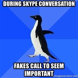 Socially Awkward Penguin - during skype conversation fakes call to seem important