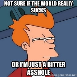 Futurama Fry - not sure if the world really sucks or i'm just a bitter asshole