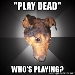 """Depression Dog - """"Play dead"""" Who's playing?"""