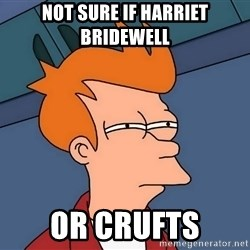 Futurama Fry - not sure if harriet bridewell or crufts