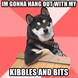 Cool Dog - im gonna hang out with my  kibbles and bits
