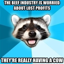 Lame Pun Coon - The beef industry is worried about lost profits they're really having a cow