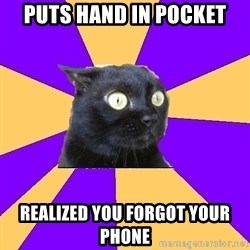 Anxiety Cat - puts hand in pocket realized you forgot your phone
