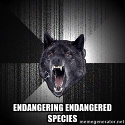 Insanity Wolf - ENDANGERING ENDANGERED SPECIES