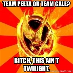 Typical fan of the hunger games - TEAM PEETA OR TEAM GALE? BITCH, THIS AIN'T TWILIGHT.