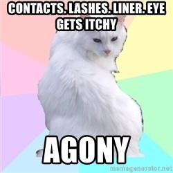 Beauty Addict Kitty - CONTACTS. LASHES. LINER. EYE GETS ITCHY AGONY
