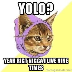 Hipster Kitty - yolo? yeah rigt nigga i live nine times