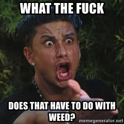 Pauly D - What the fuck Does that have to do with weed?
