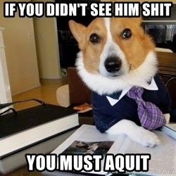 Dog Lawyer - If you didn't see him shit you must aquit