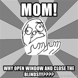 Whyyy??? - MOM! why open window and close the blinds!!!????