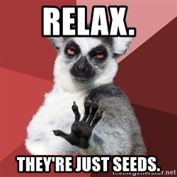 Chill Out Lemur - Relax. They're just seeds.