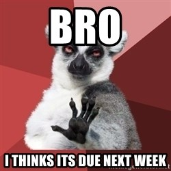 Chill Out Lemur - Bro i thinks its due next week