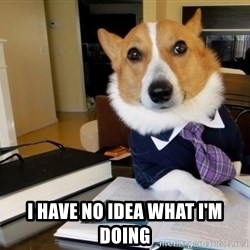 Dog Lawyer -  i HAVE nO IDEA WHAT i'M DOING