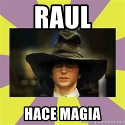 Harry Potter Sorting Hat - RAUL HACE MAGIA