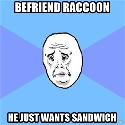 Okay Guy - Befriend raccoon He just wants sandwich
