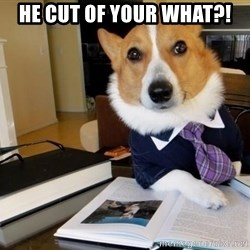 Dog Lawyer - He cut of your what?!