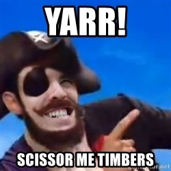 You are a pirate - YARR! SCISSOR ME TIMBERS