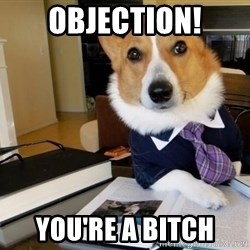 Dog Lawyer - OBJECTION! You're a bitch