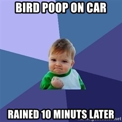 Success Kid - bird poop on car rained 10 minuts later