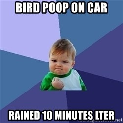 Success Kid - bird poop on car rained 10 minutes lter