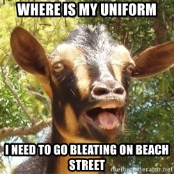 Illogical Goat - where is my uniform i need to go bleating on beach street
