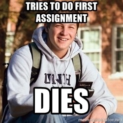College Freshman - tries to do first assignment DIES