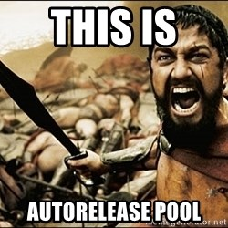This Is Sparta Meme - THIS IS  AUTORELEASE POOL