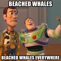 ORIGINAL TOY STORY - Beached whales beached whales everywhere