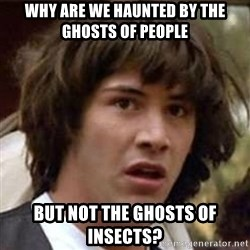 Conspiracy Keanu - why are we haunted by the ghosts of people but not the ghosts of insects?