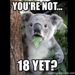 Koala can't believe it - You're not... 18 yet?