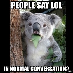 Koala can't believe it - People say lol in normal conversation?