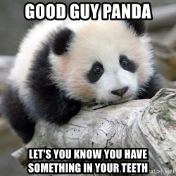sad panda - Good guy panda Let's you know you have something in your teeth