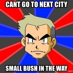 Professor Oak - cant go to next city small bush in the way