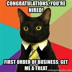 Business Cat - congratulations, you're hired! first order of business: get me a treat