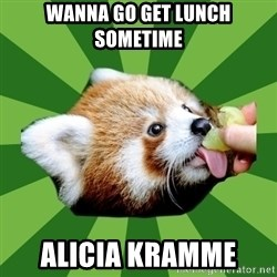 Red Panda - Wanna Go get lunch sometime  Alicia Kramme