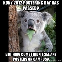 Koala can't believe it - kony 2012 postering day has passed?  but how come i didn't see any posters on campus?