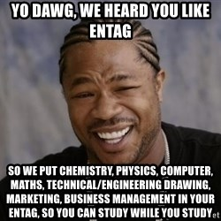 xzibit-yo-dawg - yo dawg, we heard you like entag so we put chemistry, physics, computer, maths, technical/engineering drawing, marketing, business management in your entag, so you can study while you study