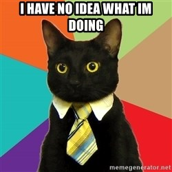 Business Cat - i have no idea what im doing